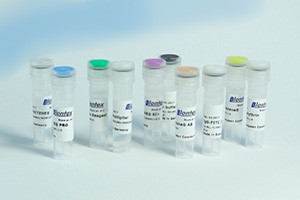 Test samples of transfection and proteofection reagents from Biontex for free