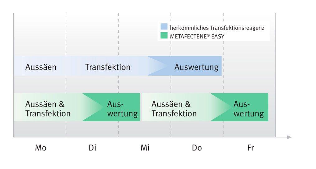 Zeitachse für das Fast-Forward Protokoll von METAFECTENE EASY