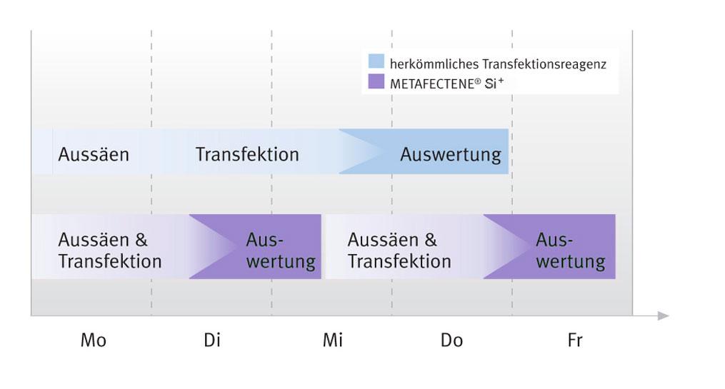 Zeitachse für das Fast-Forward Protokoll von METAFECTENE® SI⁺