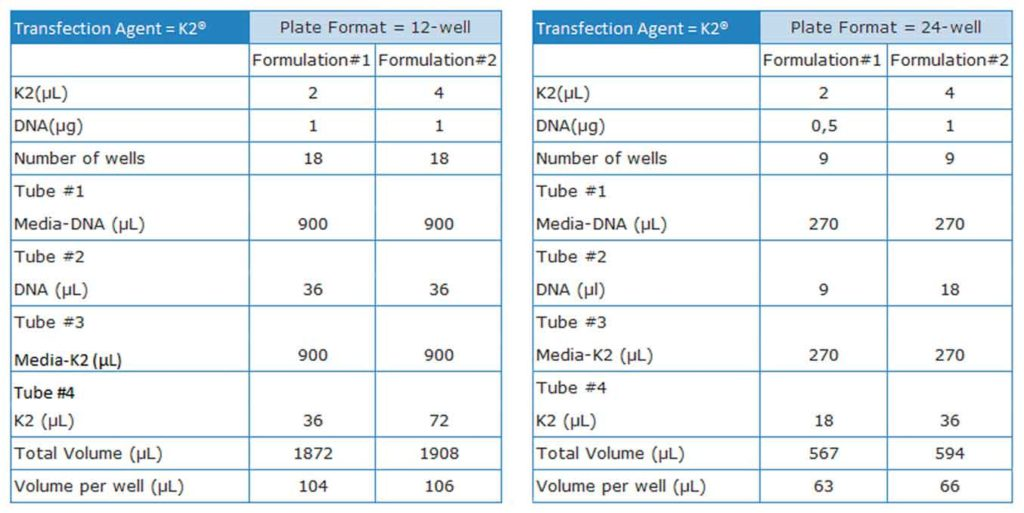 K2-Astrozyten-Tabelle