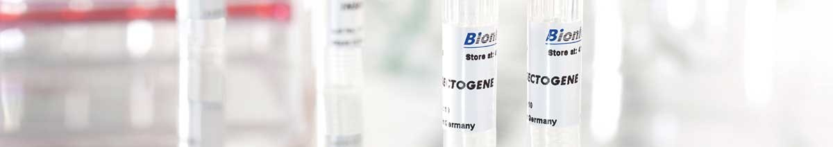Transfection reagent INSECTOGENE for insect cells from Biontex