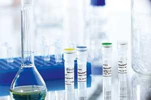 PCR Kit for detection of mycoplasmas MycoSPY from Biontex