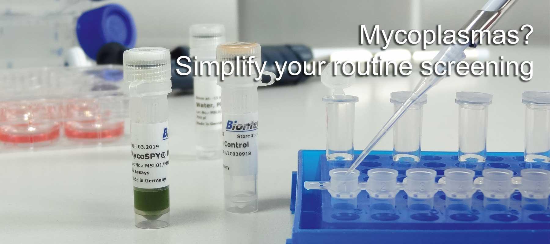MycoSPY Master Mix